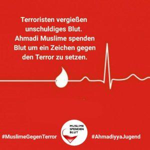 MuslimeGegenTerror